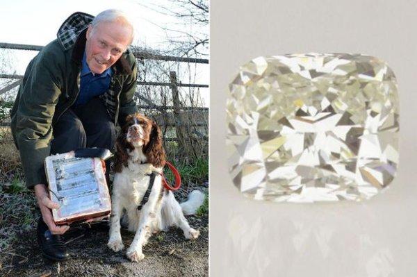 英国老汉遛狗捡到价值一万二千英镑的大钻石