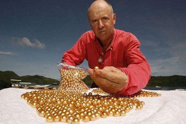涨知识了!揭秘菲律宾黄金珍珠养殖过程