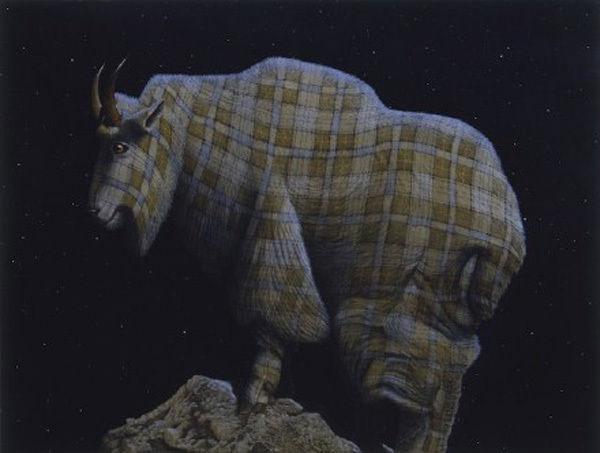 萌萌哒!当野生动物穿上花格子衬衫