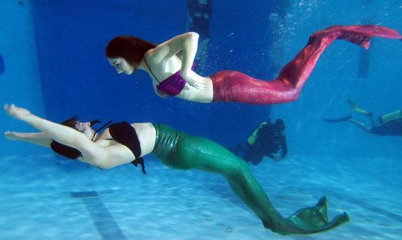 真实版的加拿大美人鱼培训学校
