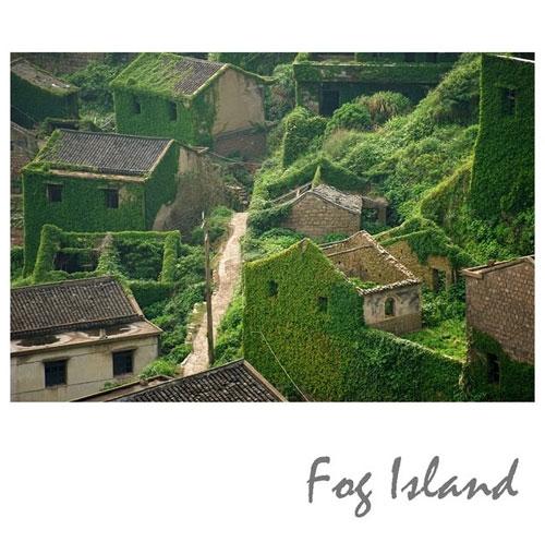 浙江一渔村无人居住逐渐荒芜 而被大自然侵蚀吞没