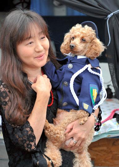 最萌警犬:日本警方邀5岁泰迪犬协助破案