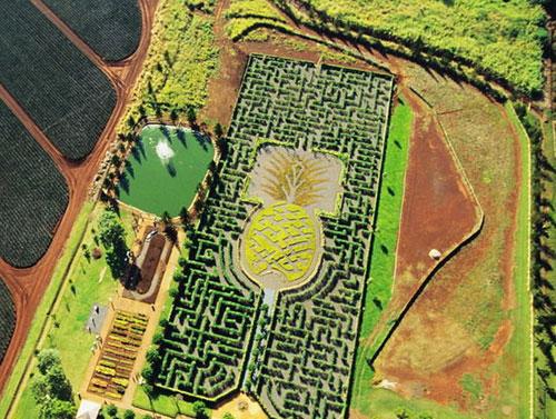盘点世界上最不可思议的17个迷宫
