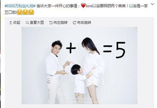 林志颖证实妻子怀双胞胎儿子 晒全家福照