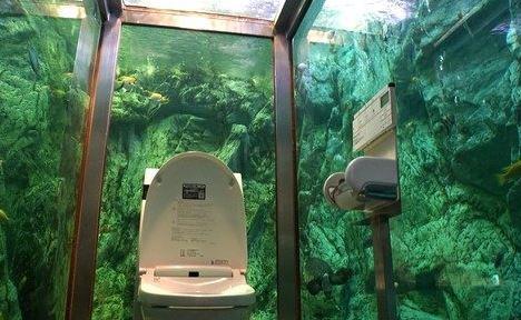 """厕所成美景:日本人体验""""与鱼共厕"""" 身临其境"""