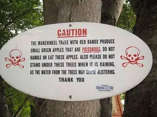 这10种水果能致命!出门千万别乱吃!