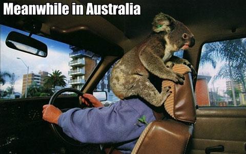 """一个澳大利亚人眼中""""不可思议""""的中国Style"""