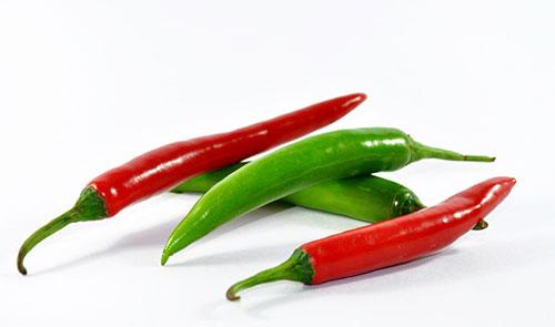 吃辣椒能减肥吗?