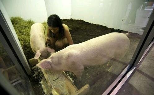 全裸美女与一群赖猪同吃睡五年 背后真相吓呆众人