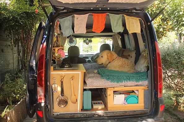 一辆旧车 一只狗 这女子开始环游世界的梦想